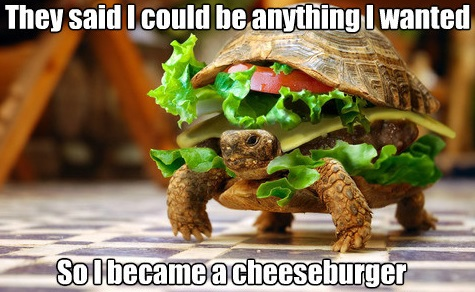 cheese-burgtle_o_1548269.jpg
