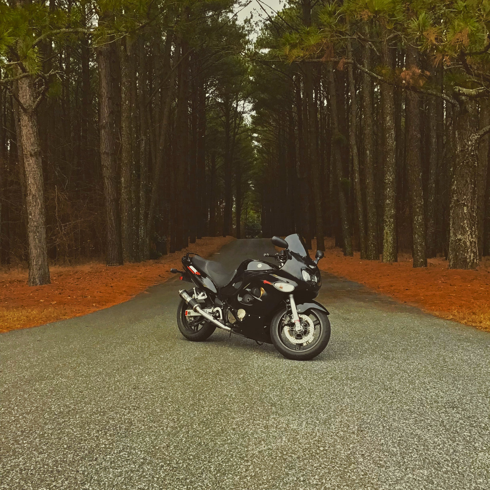 Edited picture of bike and driveway.JPG
