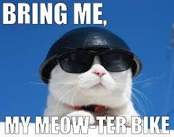 mewterbike.jpg