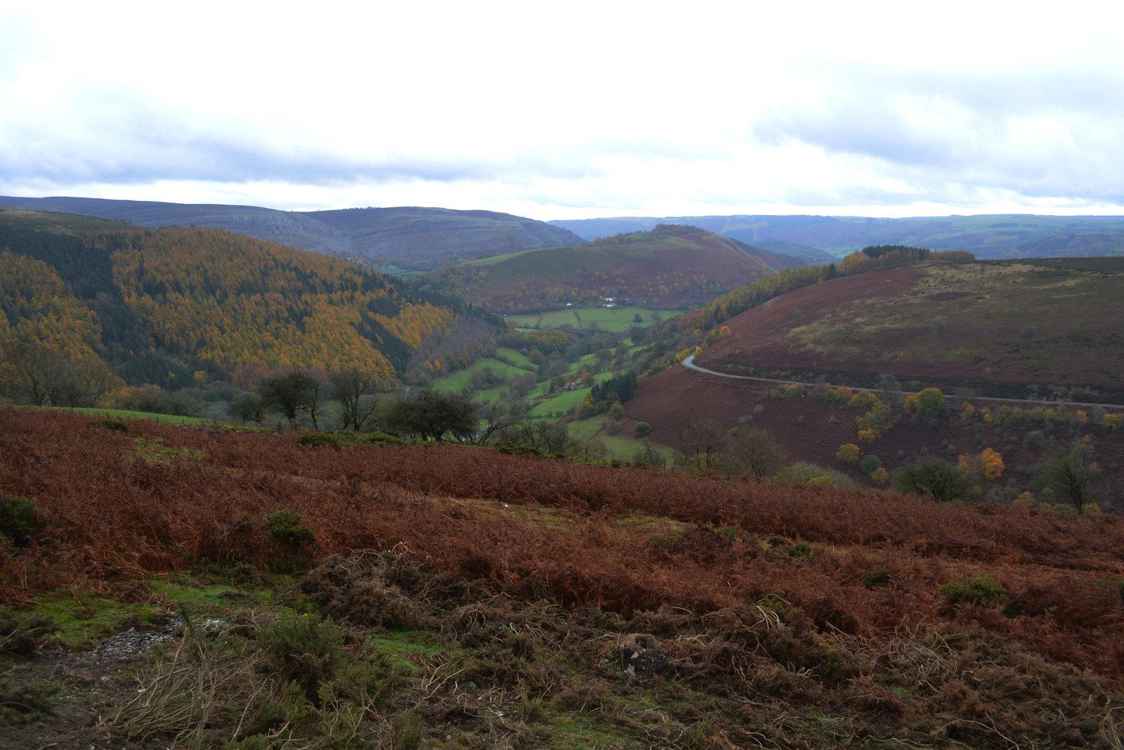 Wales 030.jpg